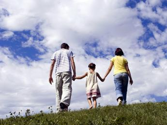 Condizione economica, Istat: Nel 2015 più famiglie soddisfatte