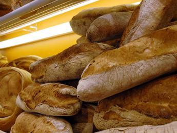 Da Milano un'app solidale contro lo spreco di cibo
