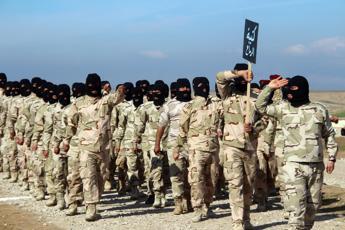 Siria, jihadisti Is vittime di leishmaniosi: 100mila casi accertati