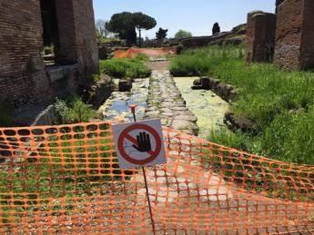 Ostia Antica 'annega' nel fango, anche il Mitreo è 'sott'acqua'/Foto
