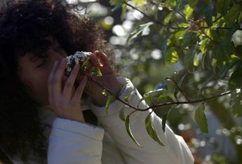 Dall'ortica alla calendula, le 'erbacce' sono ricche di vitamine e sali minerali