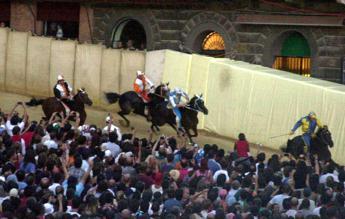 Palio di Siena, cavallo abbattuto dopo infortunio nelle prove