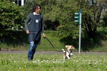Vacanze per tutti con il dog sitter a misura di app