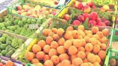 Settimana bollente, schizzano gli acquisti di frutta e verdura