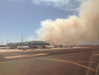 Incendio doloso in pineta, caos a Fiumicino /Video 1 -2