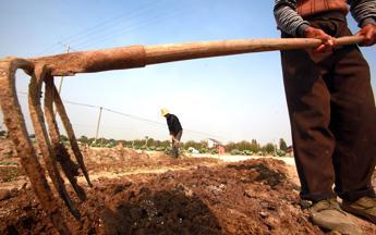 Risultati immagini per Buone pratiche agricole