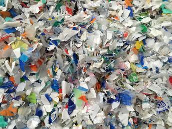 Palermo, al via giornate ricerca plastica