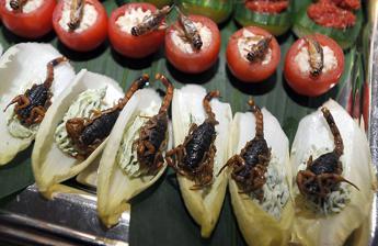 In cucina anche alghe meduse e insetti cnr sono i cibi del futuro - Alghe in cucina ...