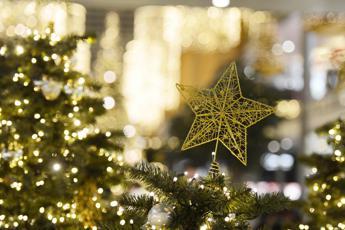 Dalle luminarie salva-clima alle ricette del riciclo, le 10 regole del Wwf per un 'verde' Natale