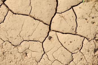 Terreni coltivabili, negli ultimi 40 anni è diventato improduttivo il 30%