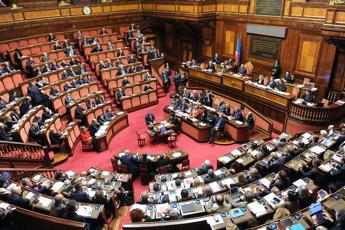Terrorismo governo sotto al senato ala vota con forza italia for Senato italia