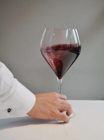 Le vespe fermentano meglio il vino, lo dice la scienza