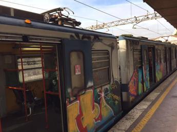 Un maiale in metro, passeggero speciale sulla Roma-Lido /Foto