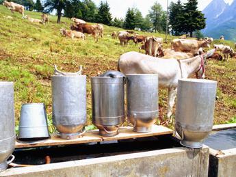 Cresce il mercato del latte bio, vale 158 milioni di euro