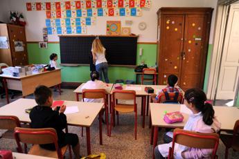 Anief: Decreto graduatorie docenti questione di giorni