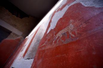 Pompei, cinque nuove domus aperte per la mostra 'Mito e natura'