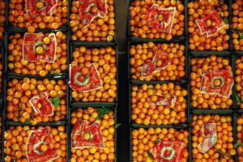 Bucce d'arancia e gusci gamberetti per la (eco)pellicola degli alimenti