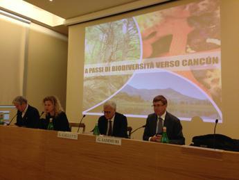 La biodiversità italiana si racconta in una mostra a Roma