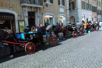 Roma, stop a botticelle con temperature sopra i 30 gradi