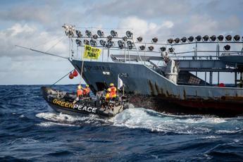 Stop alla pesca distruttiva, nuova azione di Greenpeace contro Thai Union