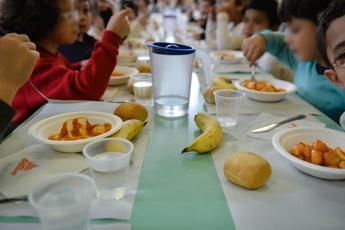 Livorno, vite nel piatto di bimbo a mensa scuola