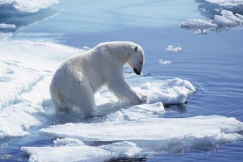 Clima, Ban Ki-moon: Il tempo è contro di noi, nessuno immune dai pericoli