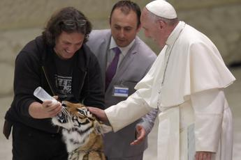 Pope Francis strokes a tiger, praises circus, street performers