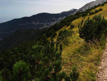 Viaggi green, italiani sempre più turisti sostenibili