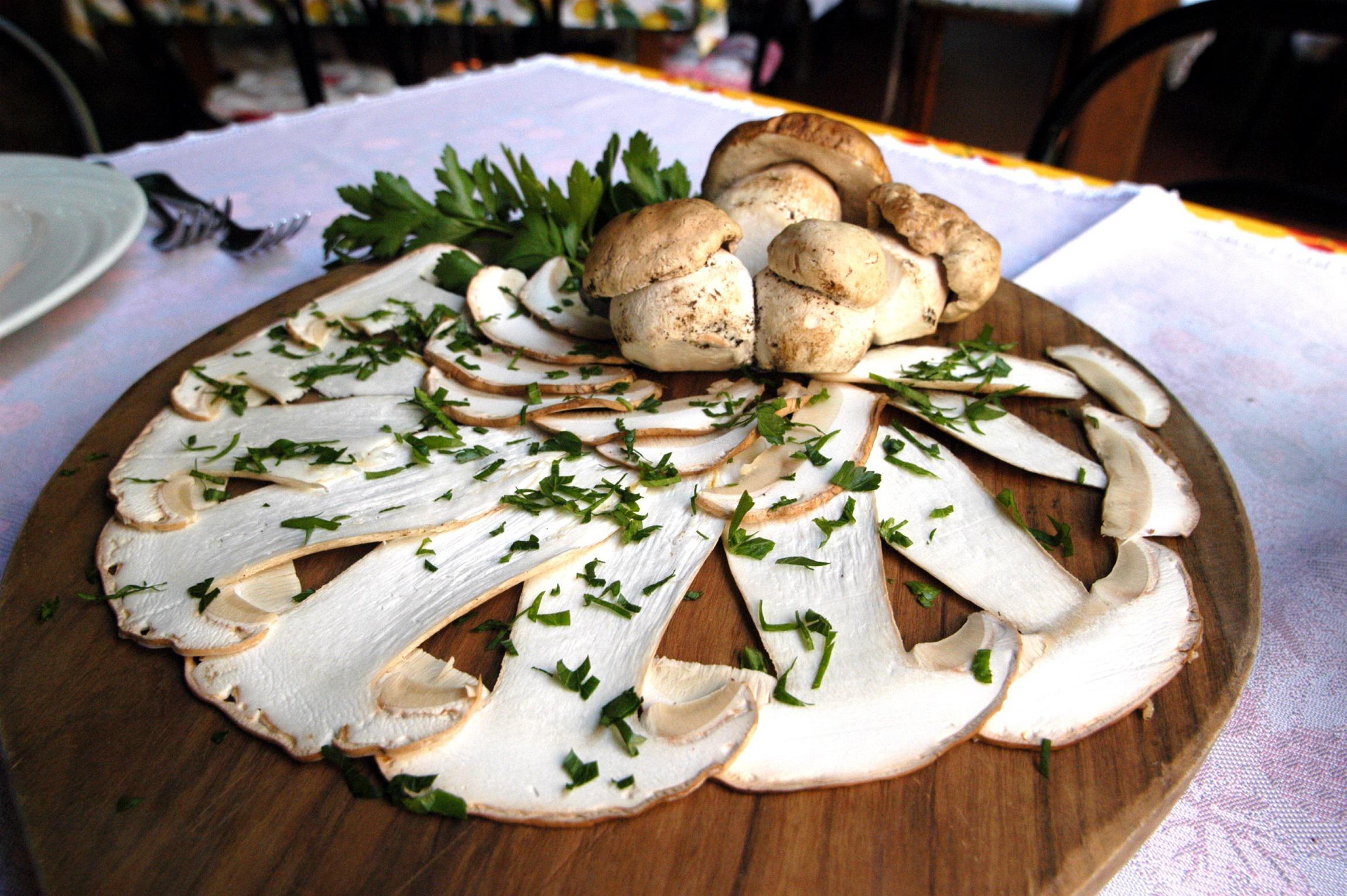 La pioggia una manna per i funghi, con stagione avara fino a 30 euro al chilo