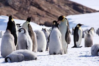 Antartide, riapre la base italiana e parte la XXXII campagna estiva