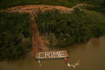 L'ambiente è un mestiere pericoloso, nel 2015 uccisi 185 attivisti