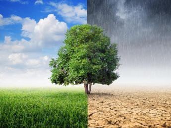 Global Warming, più sforzi per ridurre i gas serra