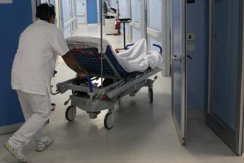 Insegnante di 64 anni stroncata dalla meningite