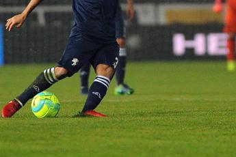 Figc, voto unanime: decaduti organi Serie A