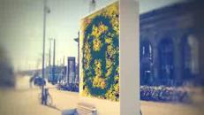 Un muro ''green'' che protegge dallo smog