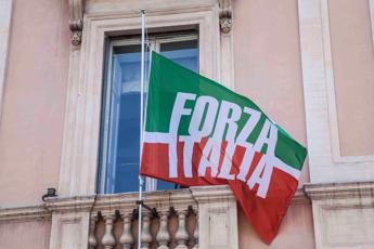 Forza Italia, Bernini e Gelmini capigruppo