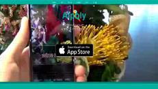 Ecco Aipoly, l'app italiana che aiuta i non vedenti