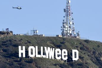 La cannabis è legale in California, Hollywood diventa Hollyweed