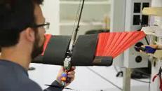 Ecco il drone che usa le ali come un vero uccello