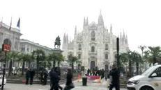 Milano, dopo le palme in piazza Duomo arrivano i banani
