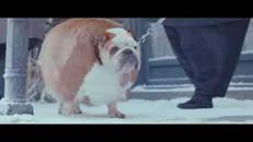'EatKarus', commuove il video-favola sulla lotta all'obesità