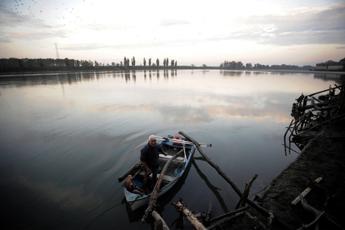 Pesticidi nel Po, banditi da decenni ma nelle acque ci sono ancora