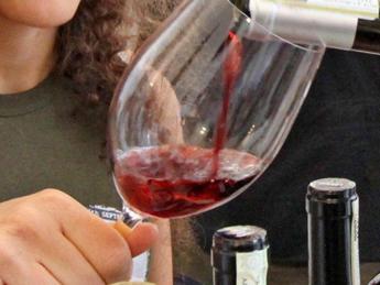 Vinitaly, le carte vincenti del vino campano