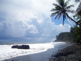 AAA sogno: cercasi coppie o famiglie per girare un video a Tahitii