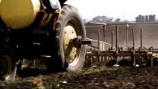 Agricoltura, In Italia nel 2016 perso l'8% del reddito