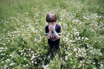 Allergie: un unico test per oltre 240 allergie. Allergie,come funziona