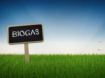 Biometano Made in Italy, 1500 impianti e produzione per 2 milioni di veicoli