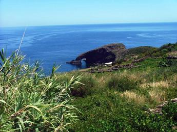 Riforestare Pantelleria dopo l'incendio del 2016, parte il crowdfunding