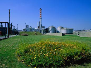 Accordo Eni-Ama, biocarburante dagli oli alimentari esausti
