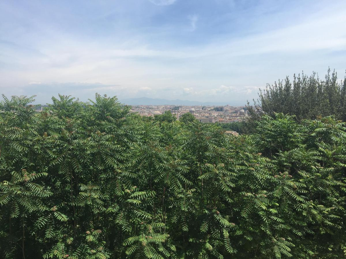 Panorama del Gianicolo addio, terrazza ostaggio di camion bar ed erbacce